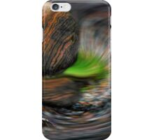 Ghost Dance on the National Mall iPhone Case/Skin