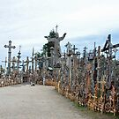 Hill of crosses by Arie Koene