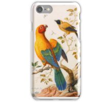Herman HENSTENBURGH (Hoorn  Hoorn ) ,A Sun Conure Parrot and a Yellow-Backed Oriole iPhone Case/Skin