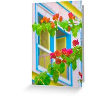 Colored Flowers in Front of  Windows House Greeting Card