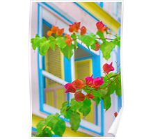 Colored Flowers in Front of  Windows House Poster