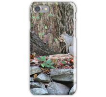ON THE STONE WALL iPhone Case/Skin
