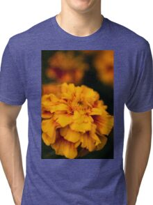 sunblush (2) Tri-blend T-Shirt
