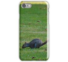 Squirrels on the Hunt iPhone Case/Skin