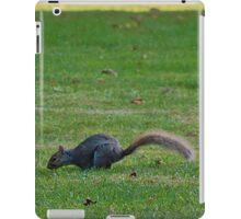 Squirrels on the Hunt iPad Case/Skin