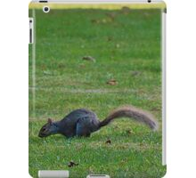 Squirrels on the Hunt iPad Case/Skin