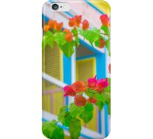 Colored Flowers in Front of  Windows House iPhone Case/Skin