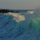 The Surf Is UP!! by Randy Richards