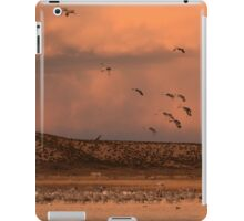 Joining the Roost iPad Case/Skin