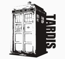 The Tardis by nmalonzo