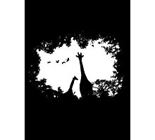 Giraffe Mother and Child Photographic Print