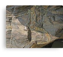 Rock Reptile Canvas Print