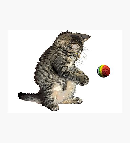 kitty cat playing ball Photographic Print