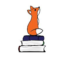 Fox on Books - color Photographic Print