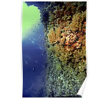 UNDERWATER LANDSCAPE PERSPECTIVES Poster