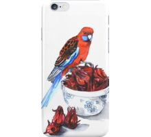 The Rosellas iPhone Case/Skin