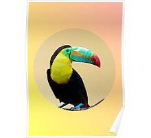 Toucan-polygonal style   Poster