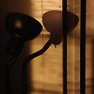 late afternoon snakelamp h2 by dedmanshootn
