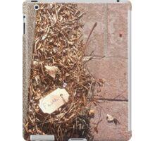 Walk of Faith iPad Case/Skin