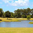 Golf Course Beauty by Cynthia48