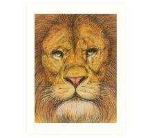 Regal Lion Drawing Art Print