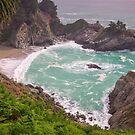 McWay Falls - Julia Pfeiffer Burns State Park - California USA by TonyCrehan