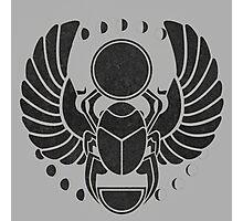 scarab beatle Photographic Print