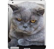 Grumpy Shorthair iPad Case/Skin
