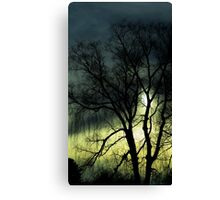 Trees - weeping willow, winter (2016) Canvas Print
