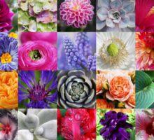 Colours of Nature - Farben der Natur Sticker