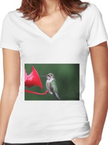 Psalm 50:11  I know every bird in the mountains, and the insects in the fields are mine Women's Fitted V-Neck T-Shirt