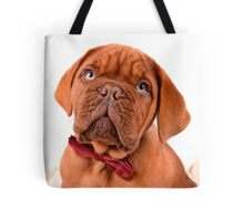 Bow Tie Baby Dogue Tote Bag