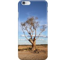 Standing Through Time iPhone Case/Skin