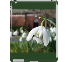The Snowdrop iPad Case/Skin