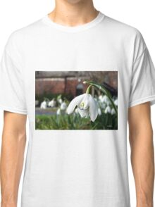 The Snowdrop Classic T-Shirt