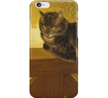 Theophile Alexandre Steinlen - Summer - Cat On A Balustrade iPhone Case/Skin