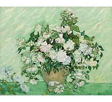 Vincent Van Gogh - Roses  Photographic Print