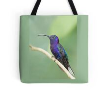 Violet sabrewing hummingbird - Costa Rica Tote Bag