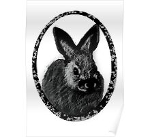 Baby Hare Poster