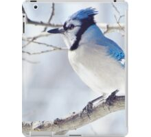 Pretty in Blue iPad Case/Skin
