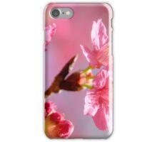 Plum Blossom 2 iPhone Case/Skin