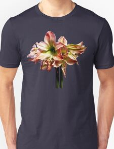 A Lovely Pink and White Amaryllis Unisex T-Shirt