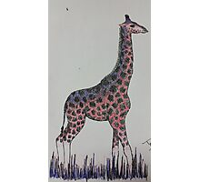 Giraffe in Red & Blue Ink Photographic Print