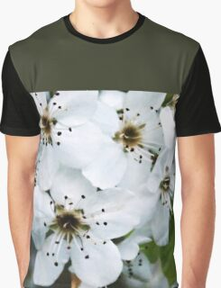 Salt Kettle Spring Flowers Graphic T-Shirt