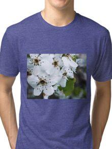 Salt Kettle Spring Flowers Tri-blend T-Shirt