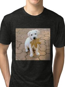 Patriotic Puppy Tri-blend T-Shirt