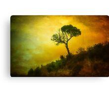 Erica's Tree Canvas Print