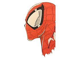 Spiderman's Profile Photographic Print
