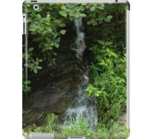 Invisible Waterfall iPad Case/Skin