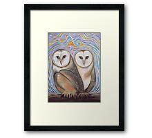 Pair of Barn Owls Framed Print
